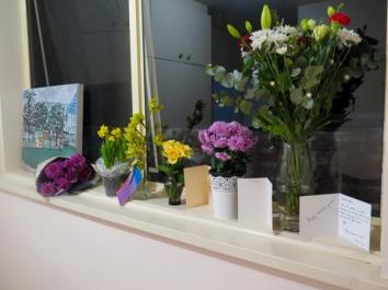 Minhas flores na janela! Felicidade que não cabia em mim!